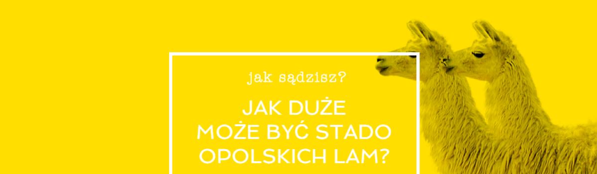 Wolontariat na 17. Festiwal Filmowy Opolskie Lamy